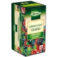 Herbata ekspresowa HERBAPOL Herbaciany Ogród Prosto z lasu 20szt.